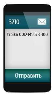 Oplata-karty-Trojka-cherez-telefon